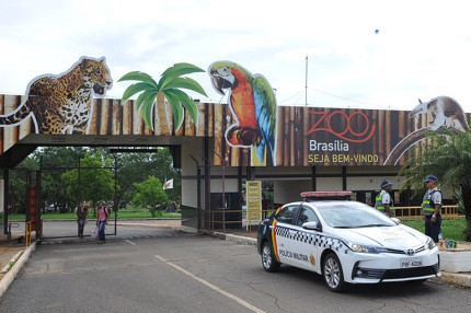 Novo concurso Fundação Jardim Zoológico de Brasília é urgente (Foto: Renato Araujo/Agência Brasília)