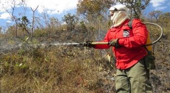 Resultado de imagem para Brigadistas florestais: Brasília Ambiental divulga resultado preliminar