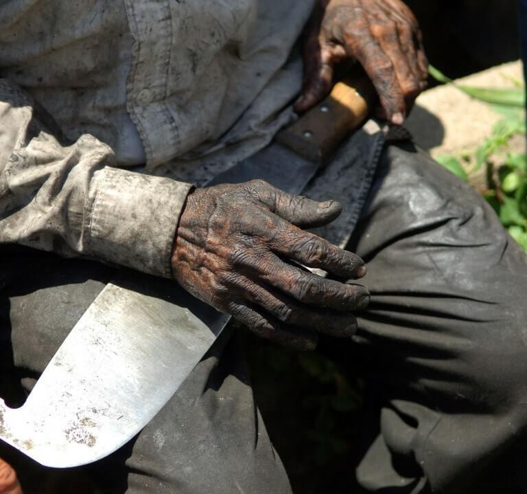 Sem concurso AFT, trabalho escravo pode crescer (Foto: Portal Brasil)