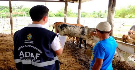Concurso Adaf-AM suspende convocações devido Coronavírus. (Foto: Adaf AM)