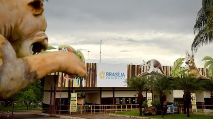 Concurso Fundação Jardim Zoológico de Brasília é urgente (Foto: André Borges/Agência Brasília)