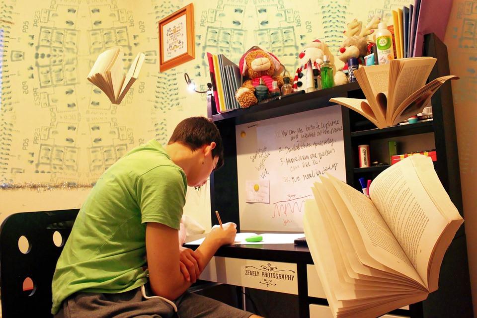 Calumbi-PE avaliará inscritos com análise curricular (Foto: Divulgação)